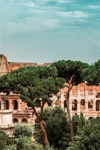 iPhone Wallpaper Colosseum, Italy, trees, world ruins