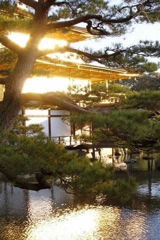 iPhone Wallpaper Japan, garden, trees, pond, sunshine