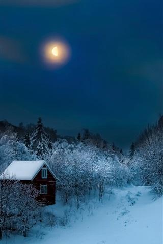 iPhone Wallpaper Night, trees, snow, winter, hut, moon