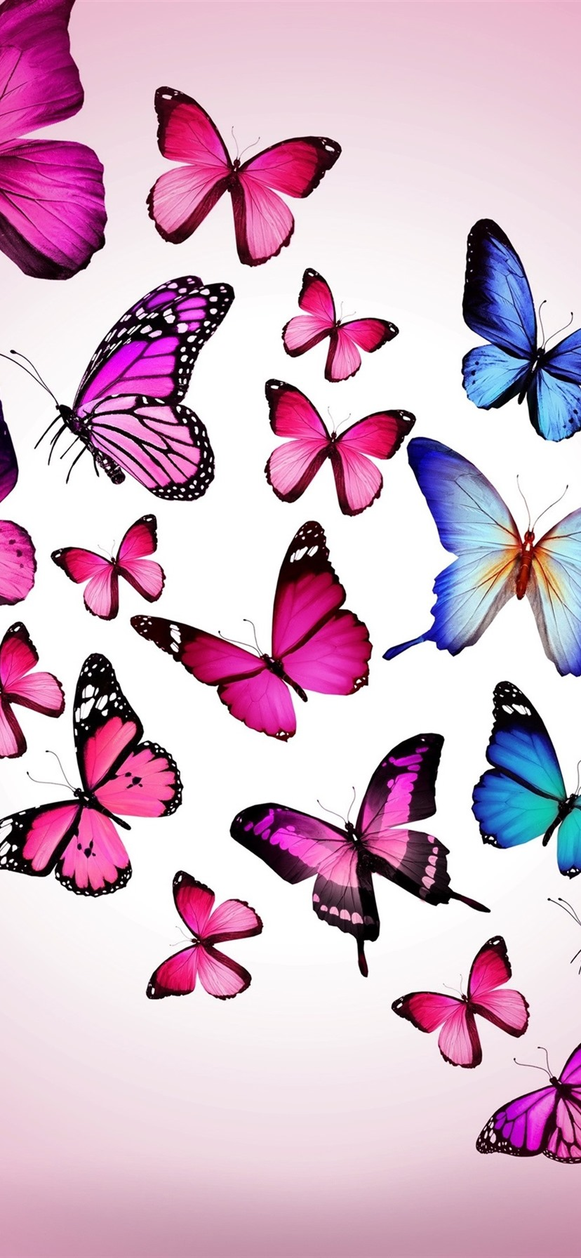 Purple And Blue Butterflies 1080x1920 Iphone 8 7 6 6s Plus Wallpaper Background Picture Image