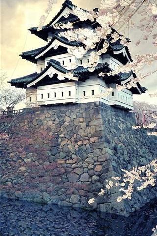 iPhone Wallpaper Sakura blossom, spring, temple, Japan