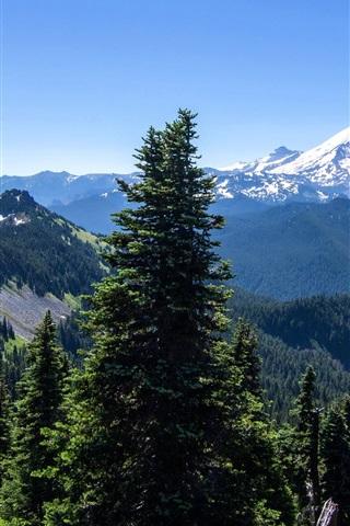 iPhone Wallpaper Alaska, mountains, trees, forest, blue sky, USA