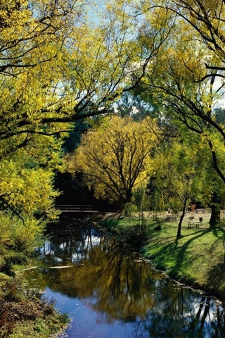 iPhone Wallpaper Australia, park, trees, river, bridge, sunshine