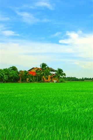 iPhone Wallpaper Beautiful Asian tropical scenery, house, green field, sky, trees
