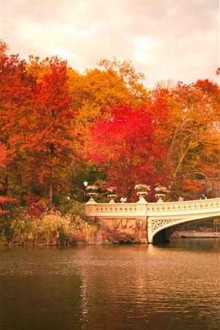 iPhone Обои Центральный парк, лодки, мост, деревья, красные листья, осень, США