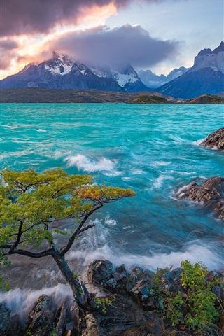 iPhone Hintergrundbilder Cuernos del Paine, Patagonien, Chile, See Pehoe, Berge, Baum, Sonnenaufgang