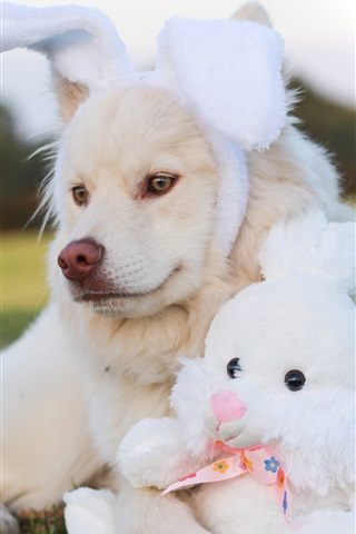 iPhone Wallpaper Dog and rabbit toy, funny animals