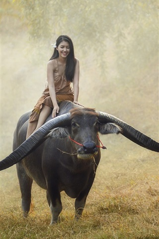 iPhone Wallpaper Girl ride buffalo, Thailand