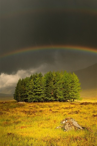 iPhone Wallpaper Gloomy and cloudy sky, grass, trees, rainbow