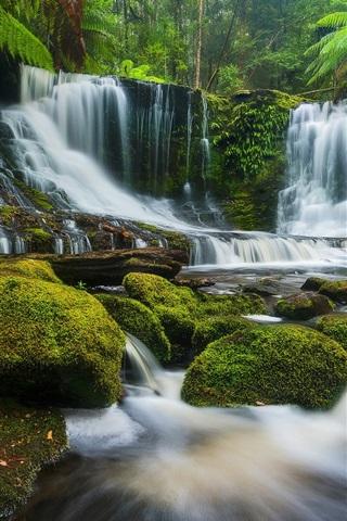 iPhone Wallpaper Horseshoe Falls, creek, plants, moss