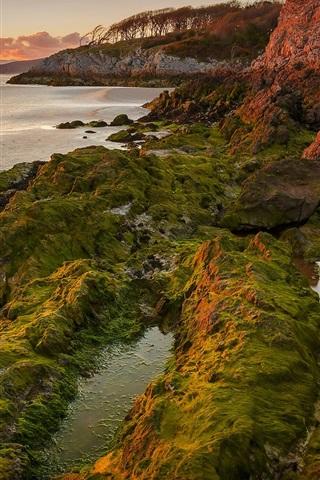iPhone Wallpaper Lake, sunset, algae, mountains, rocks