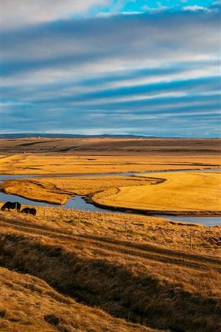 iPhone Wallpaper Pasture, horses, river, grass, sky, clouds
