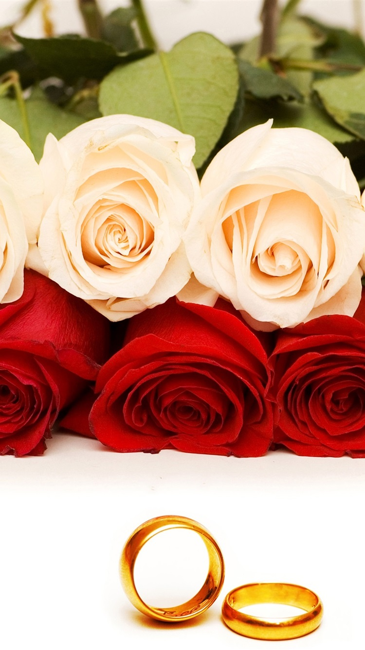 Red And Orange Roses Gold Rings 750x1334 Iphone 8 7 6 6s Wallpaper Background Picture Image