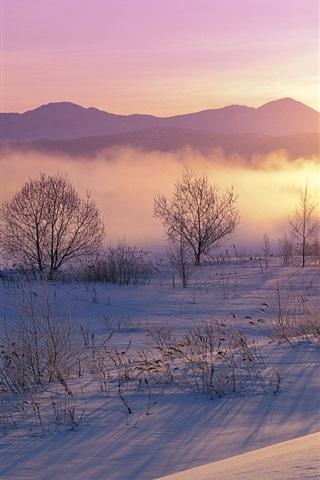 iPhone Wallpaper Winter, snow, morning, sunrise, trees, mist