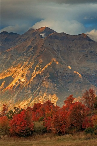 iPhone Wallpaper Autumn, forest, trees, sky, clouds, mountain