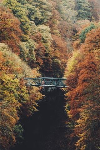 iPhone Wallpaper Autumn, trees, bridge, river