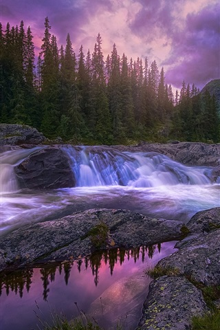 iPhone Wallpaper Beautiful nature, forest, trees, mountains, stream, stones, sunset