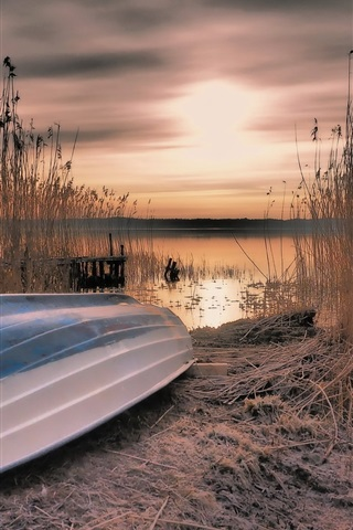iPhone Wallpaper Boat, reeds, lake, sunset