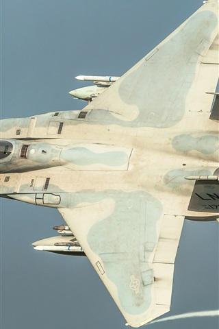 iPhone Wallpaper F-15C fighter flight in sky