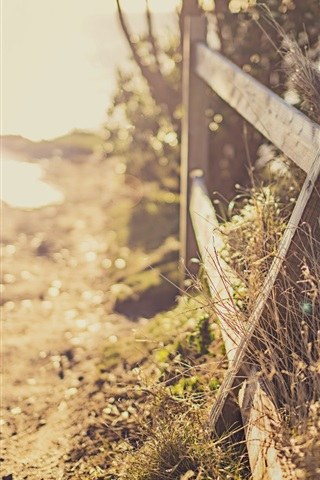 iPhone Wallpaper Fence, path, sunlight, glare