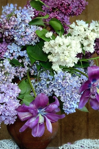 iPhone Wallpaper Flowers, lilac, phlox, tulip, vase