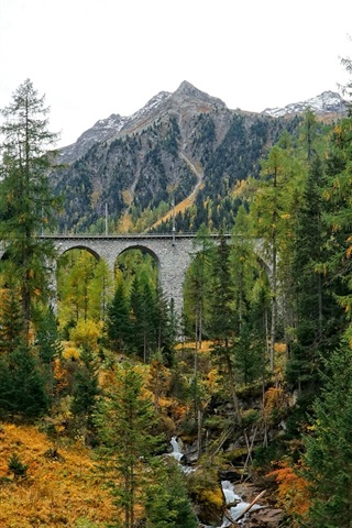 iPhone Wallpaper Forest, trees, bridge, creek
