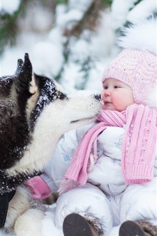 iPhone Papéis de Parede Cão ronco e bebê fofo, neve grossa