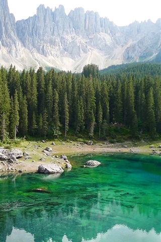 iPhone Wallpaper Italy, South Tyrol, Dolomites, forest, trees, mountains, lake