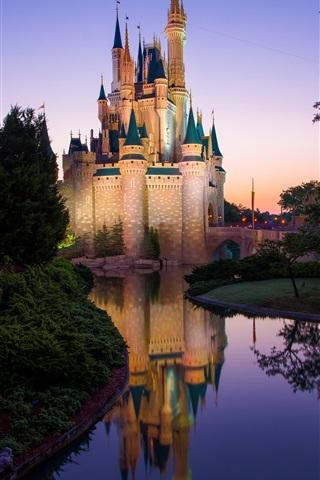 Magic Kingdom Disney Castle Disneyland Morning 1080x1920