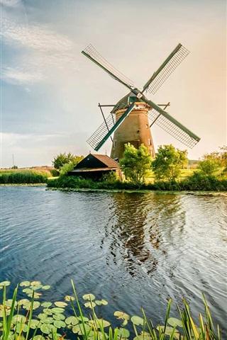 iPhone Wallpaper Netherlands, river, windmill, grass, beautiful scenery