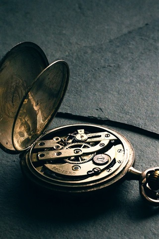iPhone Wallpaper Pocket watch, precision struct
