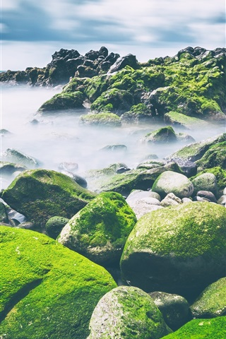 iPhone Wallpaper Sea, stones, moss, clouds, nature