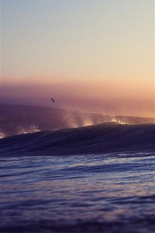 iPhone Wallpaper Sea, waves, sunset, birds