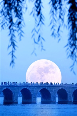 iPhone Wallpaper Seventeen-Arch bridge, lake, moon, Summer Palace, Beijing, China