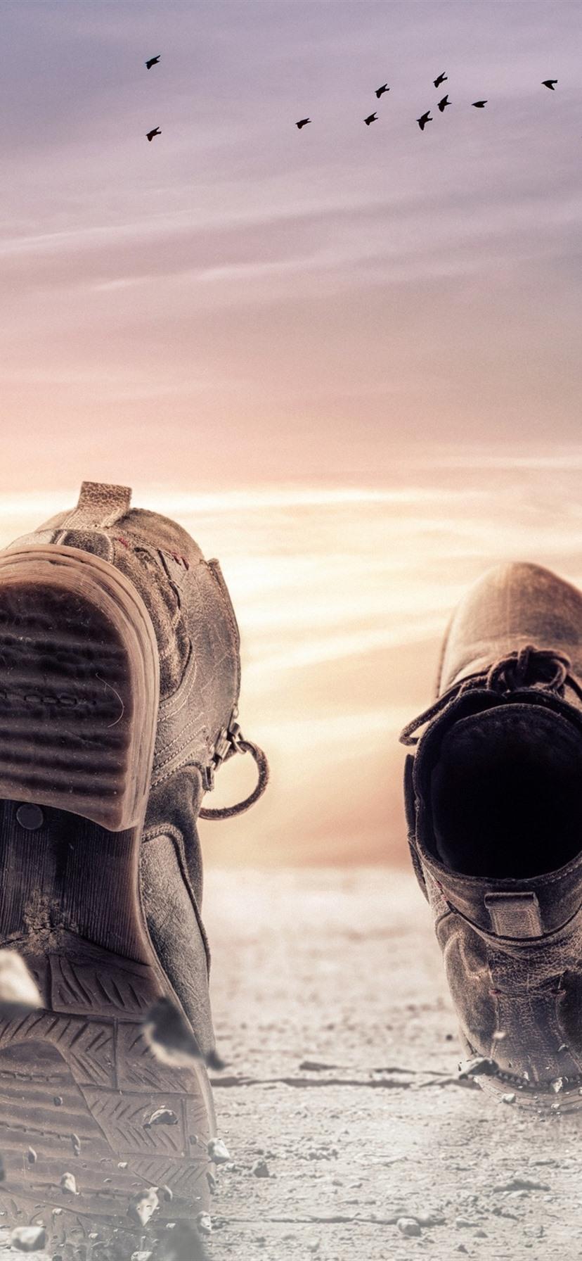 Schuhe Boden Vögel Kreativ 3840x2160 Uhd 4k
