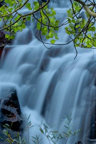 iPhone Wallpaper Twigs, leaves, waterfalls, stream