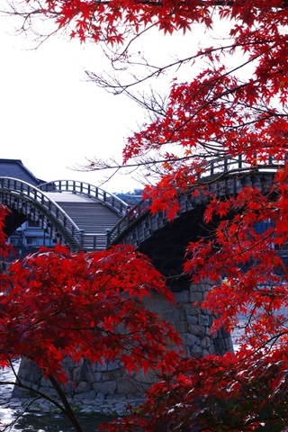 iPhone Wallpaper Wooden arched bridge, river, trees, red maple leaves, Kintai, Japan