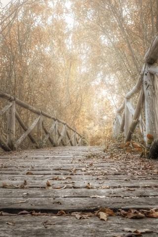 iPhone Wallpaper Wooden bridge, trees, leaves, autumn