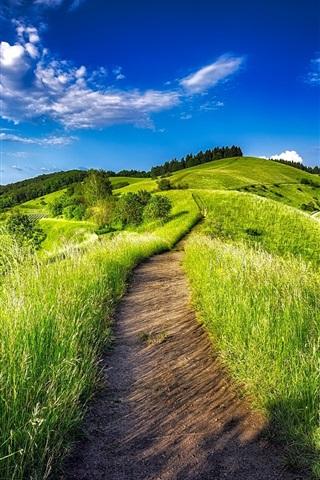 iPhone Wallpaper Germany, plantation, vineyard, grass, path