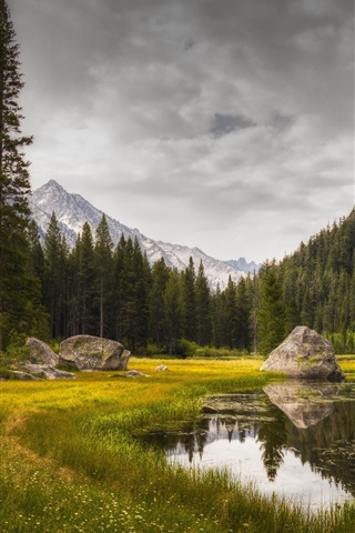 iPhone Wallpaper Grass, lake, trees, rocks, mountains