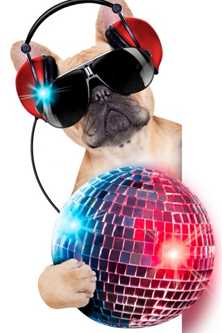 iPhone Wallpaper Humor, funny dog, headphones, glasses, colorful ball