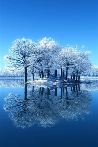 iPhone Wallpaper Island, trees, lake, clear water, winter