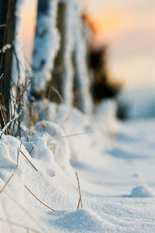 iPhone Wallpaper Thick snow, winter, fence