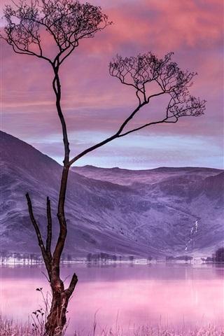iPhone Wallpaper Tree, grass, lake, mountains, dusk