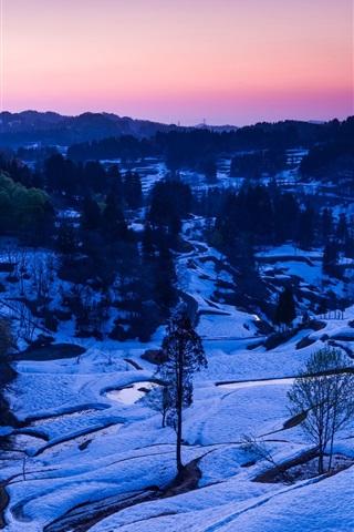 iPhone Wallpaper Winter, snow, trees, valley, dusk
