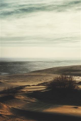 iPhone Wallpaper Beach, grass, sea, dusk