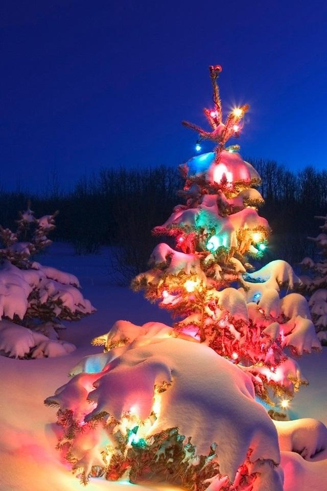 Beautiful Christmas Tree Lights Snow Night 640x960 Iphone