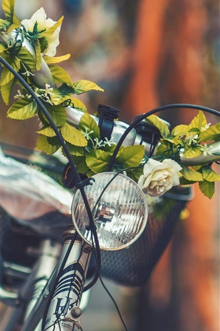 iPhone Wallpaper Bike front view, flowers, blurry background
