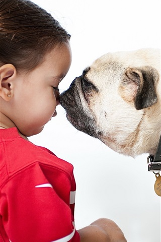 iPhone Wallpaper Bulldog and child girl, face to face, friendship