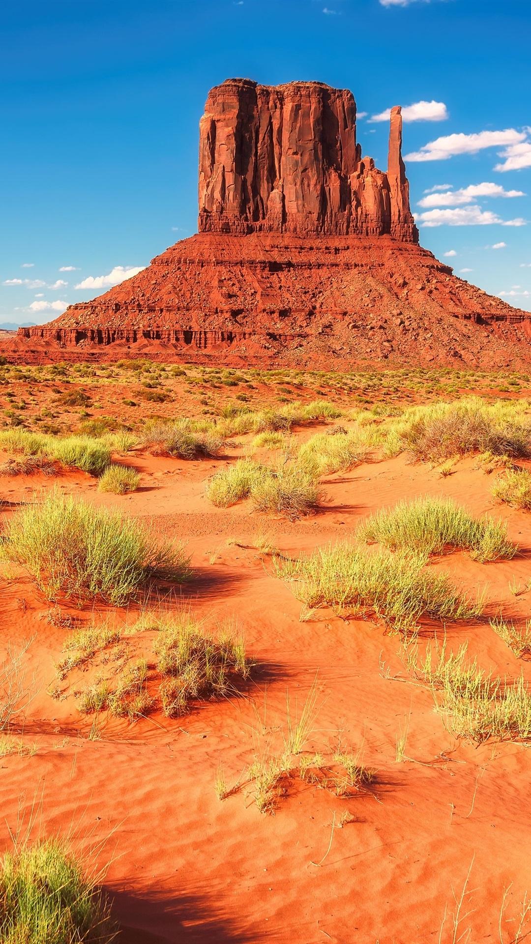 Wallpaper Desert Rocks Mountains Grass Usa Arizona